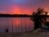 Tramonto sull'Ebro
