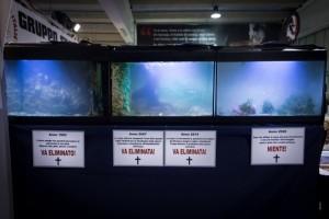 Passato, presente e futuro della pesca in Italia, MGSI