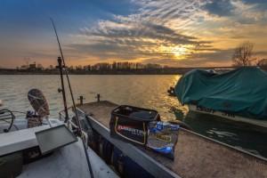 Pesca del vivo
